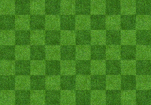 Green grass field background for soccer and football sports Premium Photo