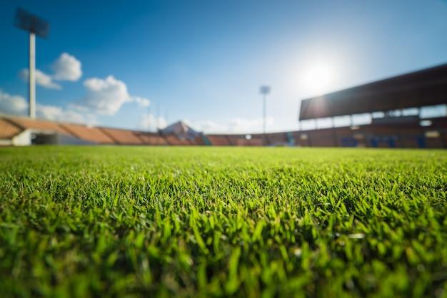 Green grass in soccer stadium Premium Photo