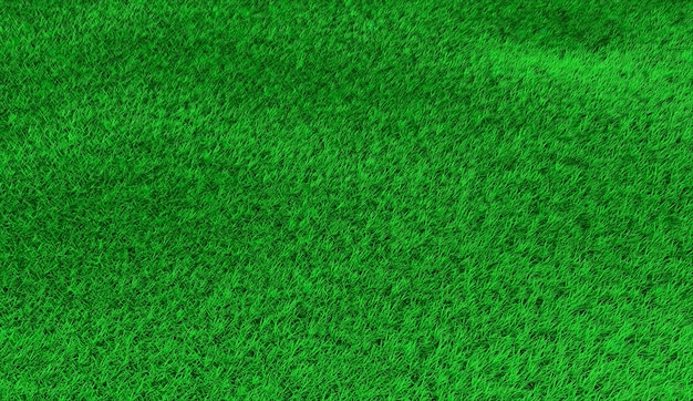 Green hilly lawn in small hummocks. 3d illustration Premium Photo