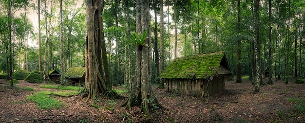 Green hut in forest Premium Photo