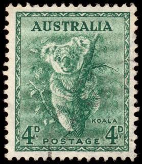 Green koala stamp Free Photo
