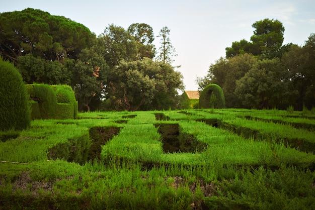 公園の緑の迷宮 無料写真