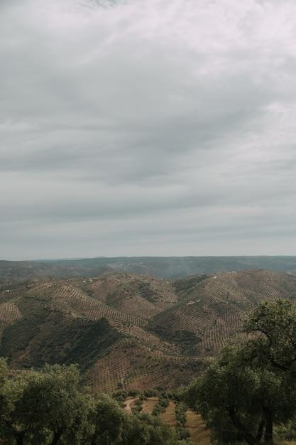 嵐の雲の下に緑の木々や山々がたくさんある緑の風景 無料写真