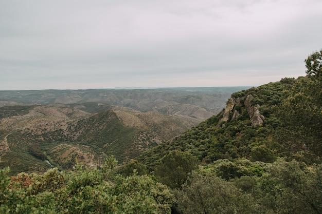 Paesaggio verde con molti alberi verdi e montagne sotto le nuvole temporalesche Foto Gratuite