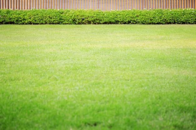 Green lawn in garden. Premium Photo