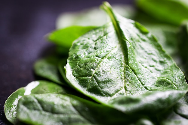 Green leaf close up on a dark table Free Photo