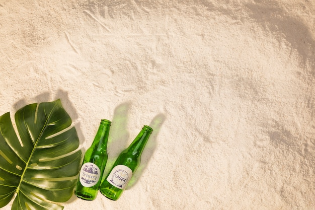 Green leaf with bottles on sand Free Photo