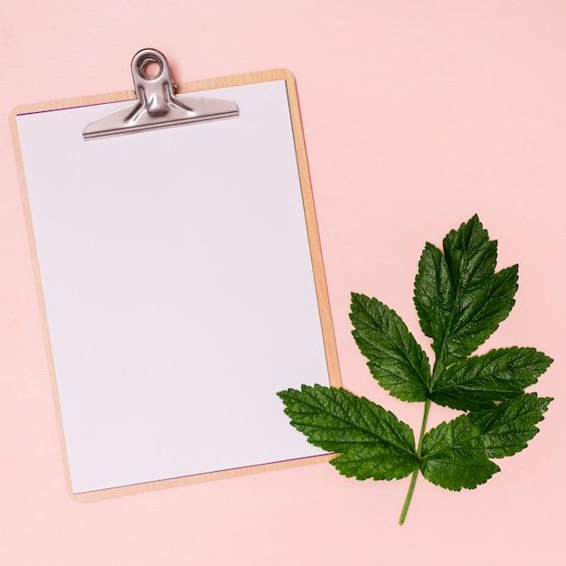 クリップボードのコピースペースと緑の葉 無料写真