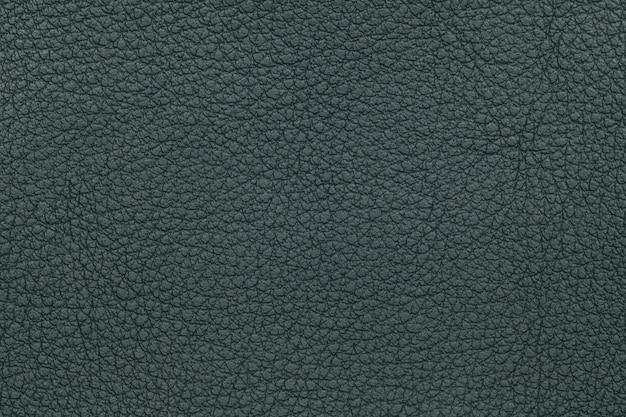 Green leather texture background. closeup photo. Premium Photo