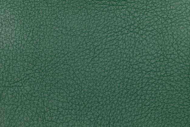 Green leather texture background Premium Photo
