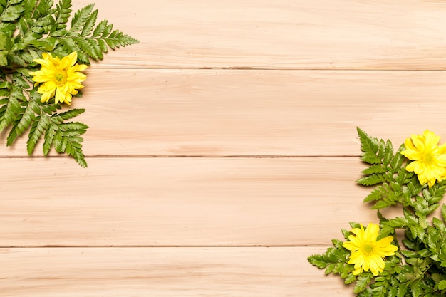 Green leaves of fern and yellow flowers on wooden surface Free Photo