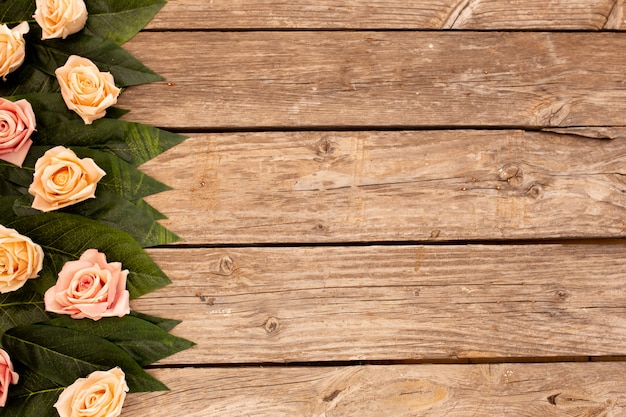 Green leaves and roses on wood background with copy space. Free Photo