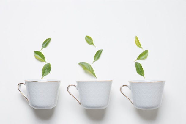 Green leaves over the three cup of tea on white background Free Photo