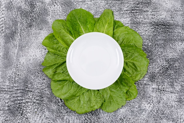 Green lettuce leaves under empty white plate Free Photo