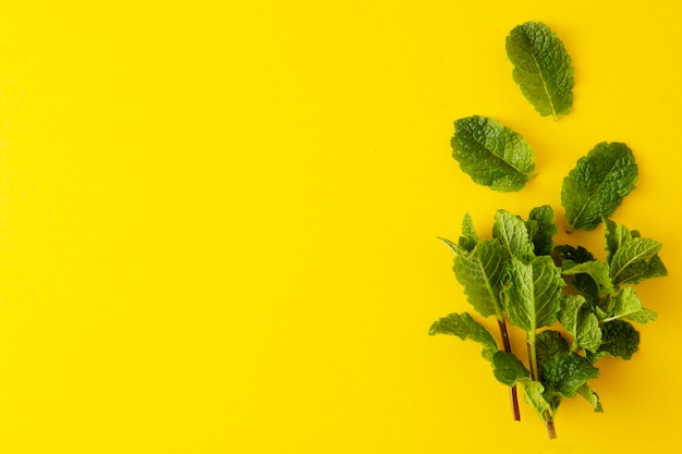 Green mint leaves on yellow background top view. cocktail or summer drink ingredients. Premium Photo