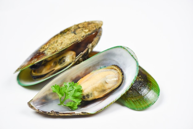 Green mussel shell with parsley Premium Photo