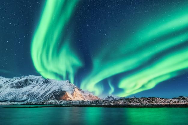 녹색 오로라 프리미엄 사진