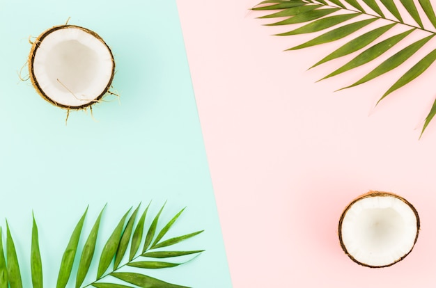 Green palm leaves with coconuts on bright table Free Photo