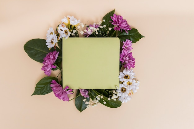 Green paper and flowers Free Photo
