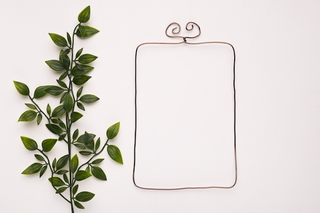 Green plant leaves near the empty frame isolated on white background Free Photo