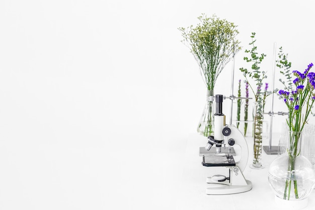 Green plants and scientific equipment in biology laborotary. Premium Photo