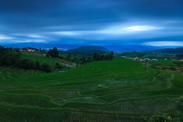 Green rice terraces at night Premium Photo