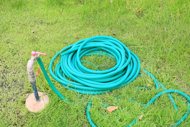 Green rubber tube for watering plants in the garden. Premium Photo