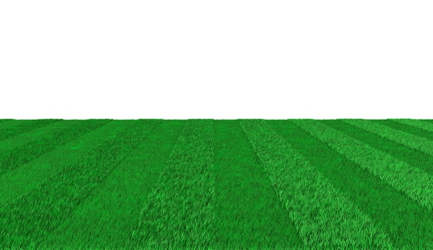 Green striped outgoing promenade for playing football. 3d illustration Premium Photo