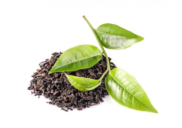 Лист зеленого чая, изолированные на белом пространстве Premium Фотографии