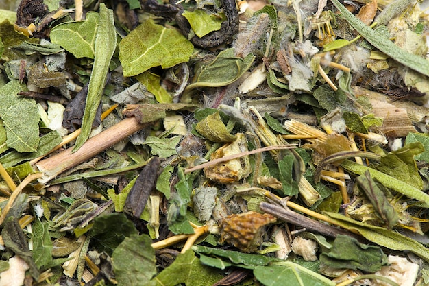 緑茶の葉は背景のテクスチャをクローズアップ Premium写真