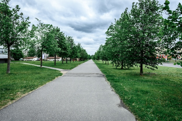 Зеленая аллея деревьев, дорожка для прогулок на свежем воздухе за городом. Premium Фотографии