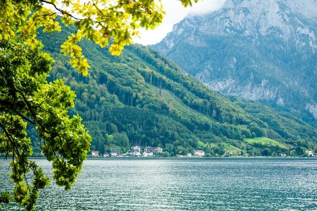 グムンデンの広いトラウンゼー湖と高山の景色を望む緑の木の枝 Premium写真
