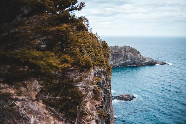 Зеленые деревья на коричневой скалистой горе около голубого моря под голубым и белым облачным небом во время Бесплатные Фотографии