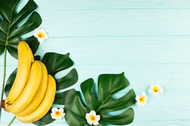 Green tropical plant leaves and bananas Free Photo