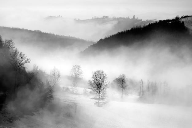 Оттенки серого на холмах, покрытых лесом и туманом под облачным небом в ланге в италии Бесплатные Фотографии