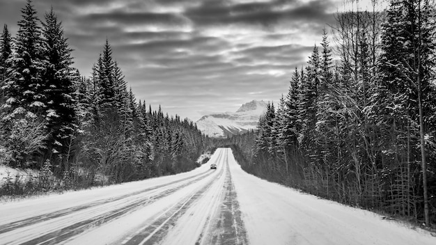 Greyscale shot of a car on a highway in the middle of a forest surrounded by snowy mountains Free Photo