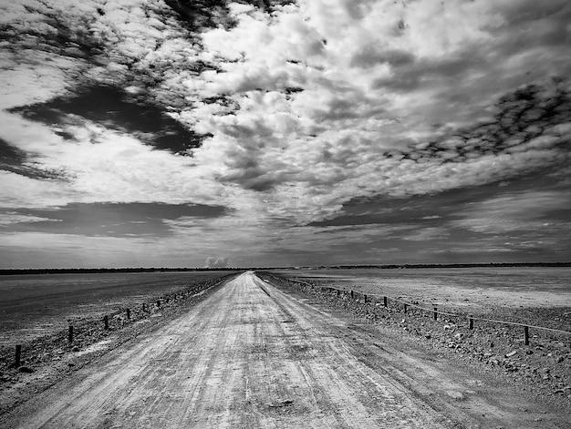 Colpo in scala di grigi dell'etosha pan nel parco nazionale etosha in namibia sotto il cielo nuvoloso Foto Gratuite