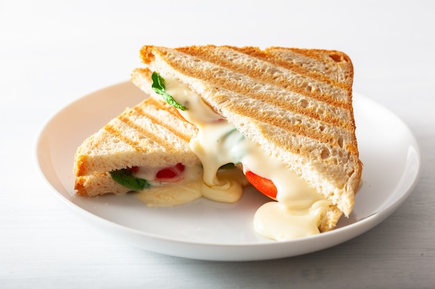 Grilled cheese and tomato sandwich on white background Premium Photo