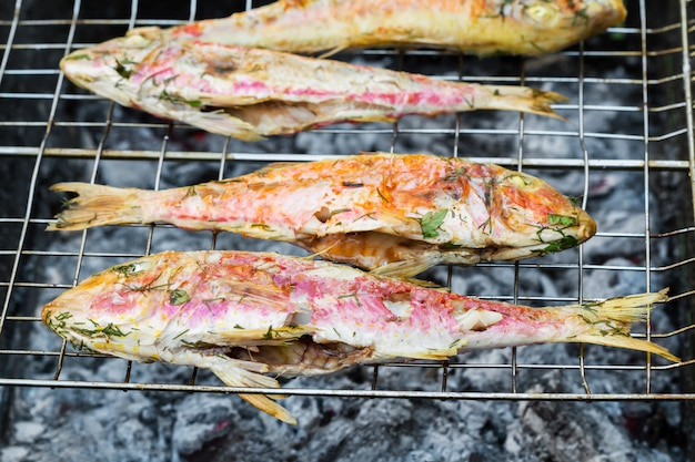Grilled fish with spices on fire. grilling fish surmullet on campfire (bbq). Premium Photo