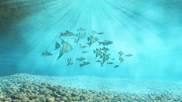 Group of fish Free Photo