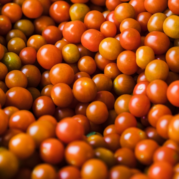 Group of fresh juicy cherry tomato for sale Free Photo