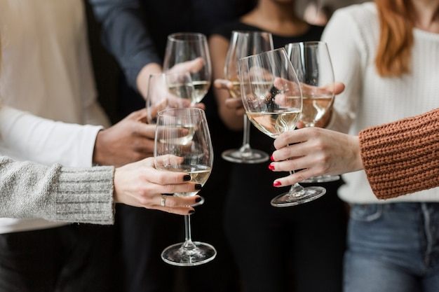 Group of friends toasting wine glasses together Free Photo