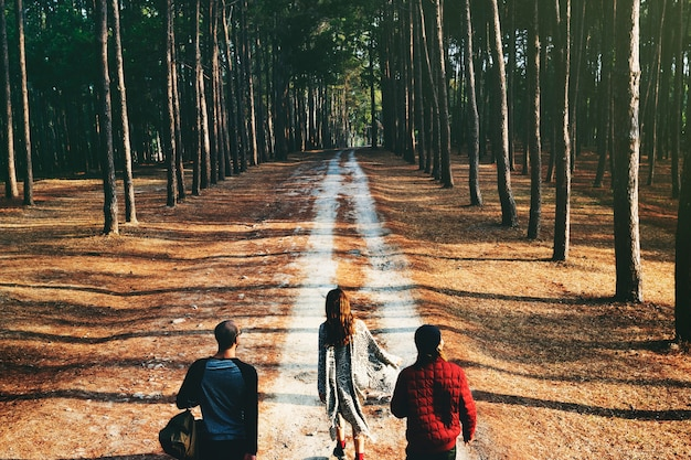 Group of friends travel in the forest together Free Photo