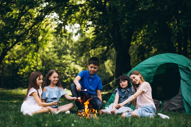 Group of kids in forest by bonfire with mushmellows Free Photo