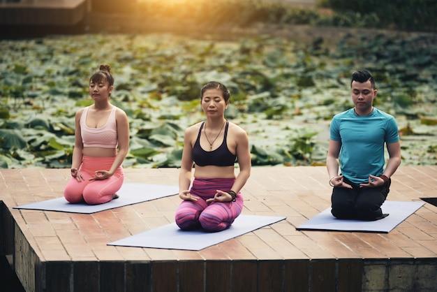 Group meditation Free Photo