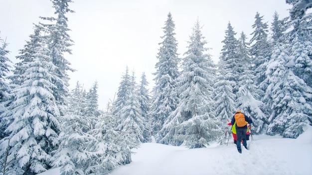 Группа альпинистов, прогулки по тропе в горах зимой Premium Фотографии