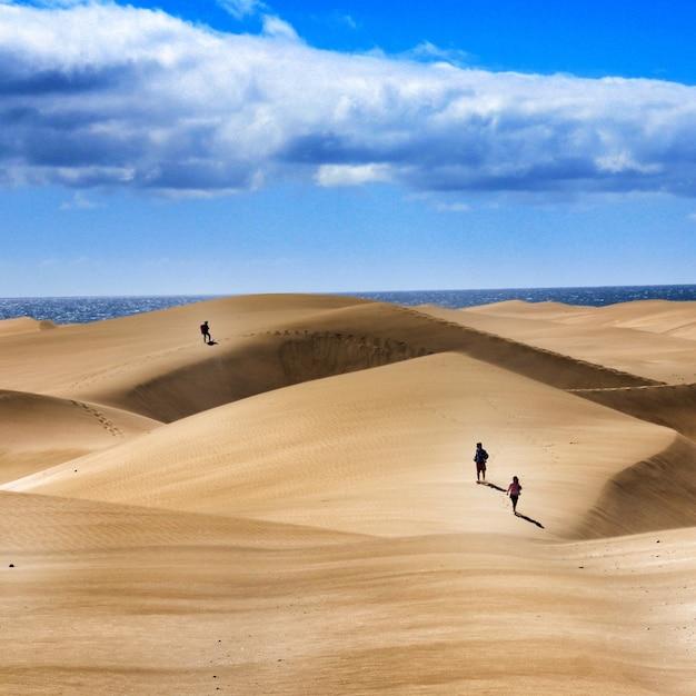 흐린 하늘 아래 모래 언덕을 걷는 사람들의 그룹 무료 사진