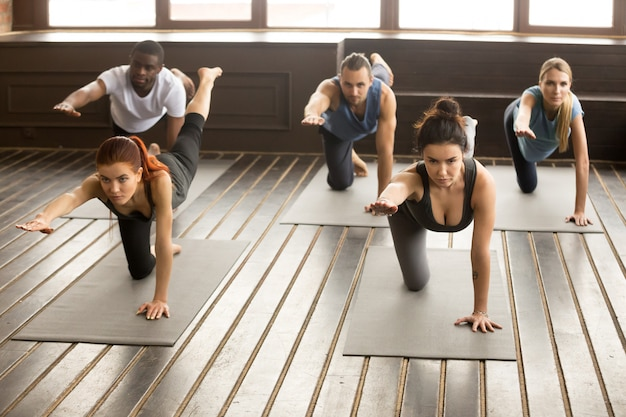 Group of sporty people in donkey pose Free Photo