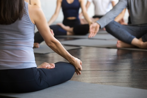 Group of young sporty people sitting in lotus pose, closeup Free Photo