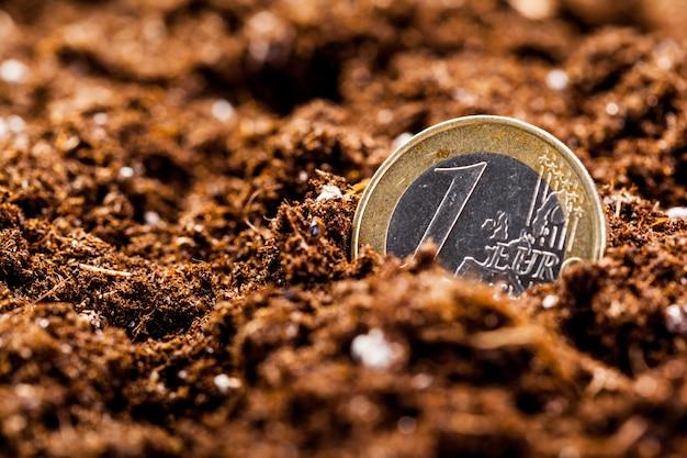 Выращивание монет евро. малая глубина резкости. Premium Фотографии